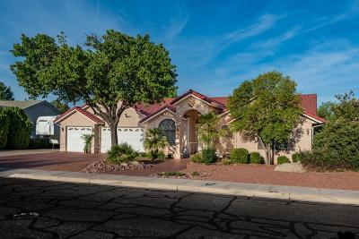 St George UT Single Family Home For Sale: $415,000