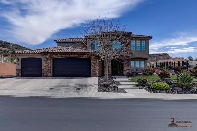Washington Single Family Home For Sale: 587 S Ali Ln