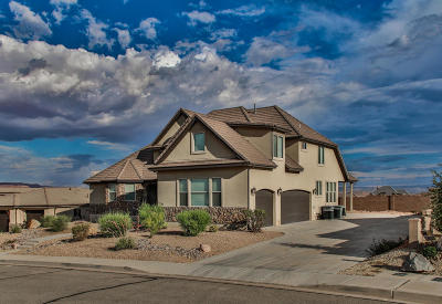 St George Single Family Home For Sale: 1682 E 180 S