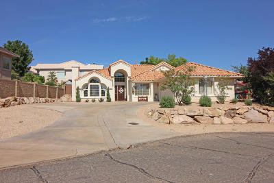 St George Single Family Home For Sale: 2280 Abronia Cir