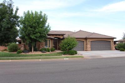 Washington Single Family Home For Sale: 4028 Precious Way