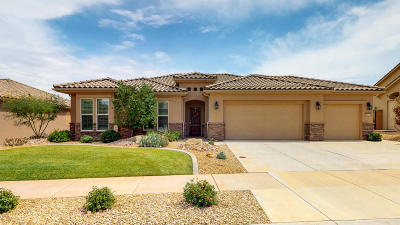 St George Single Family Home For Sale: 1583 W Songbird Dr