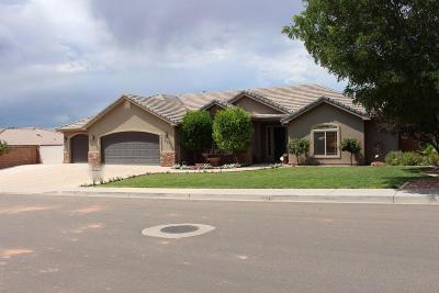 Washington Single Family Home For Sale: 937 E Coyote Lp