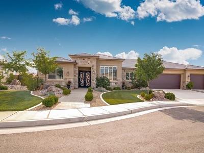 Washington Single Family Home For Sale: 1890 N Vista Springs Dr