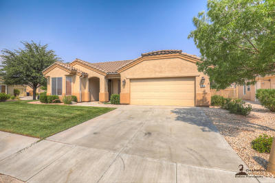 St George Single Family Home For Sale: 4549 S Ironwood