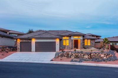 Washington Single Family Home For Sale: 397 S Leoni Way
