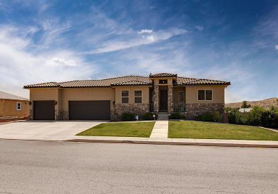 St George Single Family Home For Sale: 1980 2630 S Cir