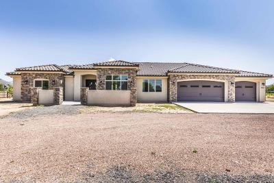 Dammeron Valley Single Family Home For Sale: 912 N Old Farms Rd