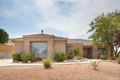St George Single Family Home For Sale: 3336 S Paiute