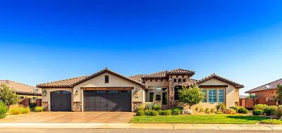 Washington Single Family Home For Sale: 1041 E 4430 S