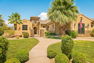 Washington Single Family Home For Sale: 221 E Skyline Cir