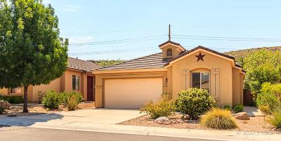 Washington Single Family Home For Sale: 906 N Echo Ln