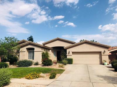 Washington Single Family Home For Sale: 3295 E Sweetwater Springs Dr