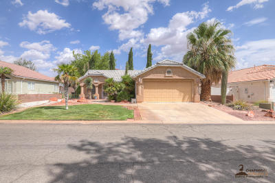 Ivins Single Family Home For Sale: 343 E 710 S
