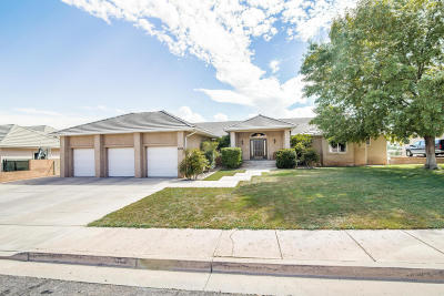 St George Single Family Home For Sale: 1008 E 1720 S