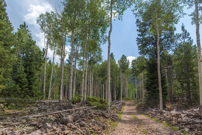 Beaver UT Residential Lots & Land For Sale: $159,000