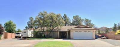 St George Single Family Home For Sale: 333 Damascus