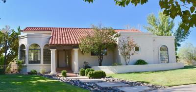St George Single Family Home For Sale: 565 Citation