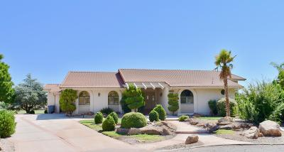 St George Single Family Home For Sale: 1338 Nelson Cir