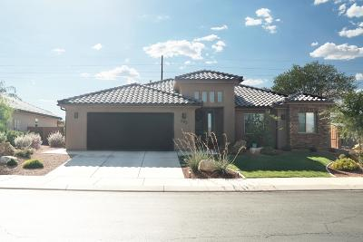 Ivins Single Family Home For Sale: 205 E Desert Rose Way