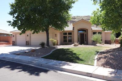 Washington Single Family Home For Sale: 652 Mojave Dr