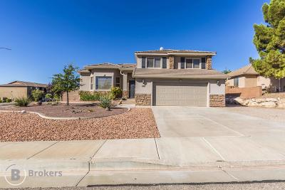 St George Single Family Home For Sale: 260 S 2020 E Cir
