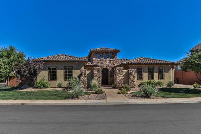 Washington Single Family Home For Sale: 951 E Sage Dell St