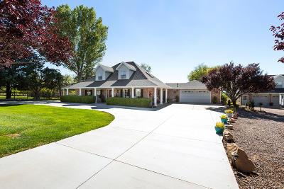 Dammeron Valley Single Family Home For Sale: 885 N Horsemans Park Dr