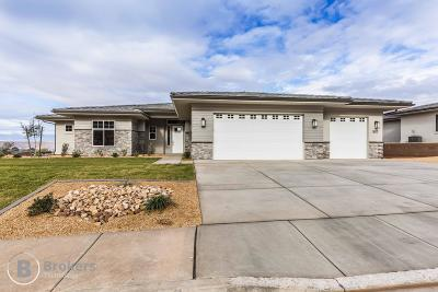 St George Single Family Home For Sale: 1617 Talus Way