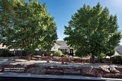 Washington Single Family Home For Sale: 551 S Terrace