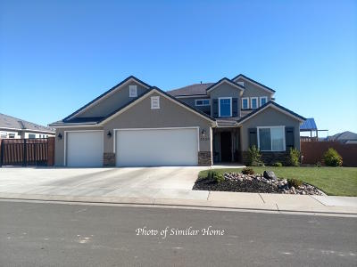 St George Single Family Home For Sale: Vineyards Ridge Lot 20