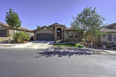 St George Single Family Home For Sale: 2031 E Colorado Dr #405