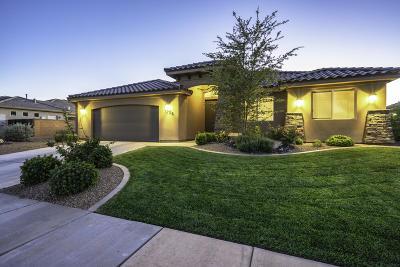 Washington Single Family Home For Sale: 3706 S 890 E