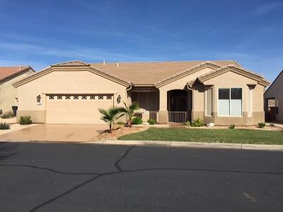 Single Family Home For Sale: 1718 Desert Rose Dr