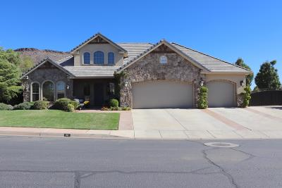 St George Single Family Home For Sale: 161 S Jaycee Dr