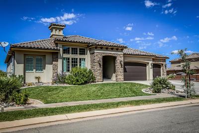 St George Single Family Home For Sale: 2893 E Auburn Dr