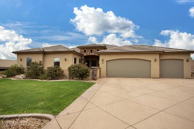 Washington Single Family Home For Sale: 1161 E Colt Ave