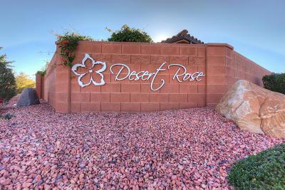 Ivins Single Family Home For Sale: 325 E Desert Gardens Ln