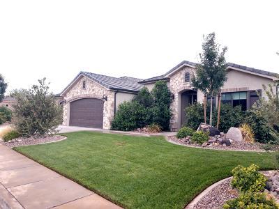 Washington Single Family Home For Sale: 438 E 1470 S