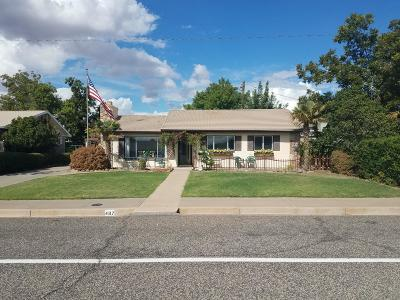 St George Single Family Home For Sale: 467 E 300 S