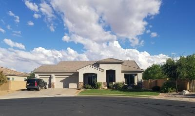 St George Single Family Home For Sale: 4991 Azalea Cir