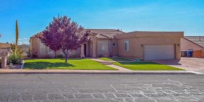 St George Single Family Home For Sale: 3 S 2000 E