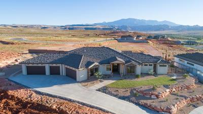 Washington Single Family Home For Sale: 36 S Eaglet