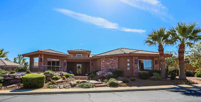 St George Single Family Home For Sale: 1635 View Point Dr