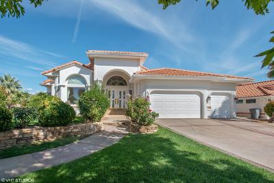 St George UT Single Family Home For Sale: $650,000