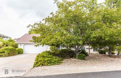 St George Single Family Home For Sale: 739 Larkspur Rd