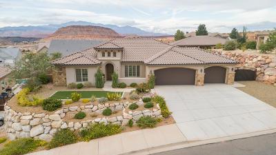 Washington Single Family Home For Sale: 1281 E Blue Sky Dr