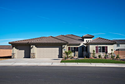 St George Single Family Home For Sale: 3135 E 2930