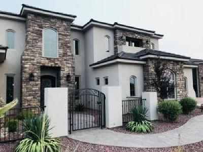 St George Single Family Home For Sale: 2844 2020 E Cir