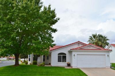 Ivins Single Family Home For Sale: 484 S Chula Vista Dr